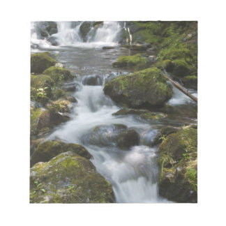 ニューブランズウィック、カナダ。 FundyのDicksonの滝 ノートパッド