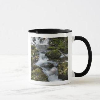 ニューブランズウィック、カナダ。 FundyのDicksonの滝 マグカップ