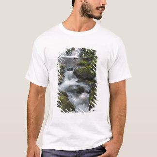 ニューブランズウィック、カナダ。 FundyのDicksonの滝 Tシャツ