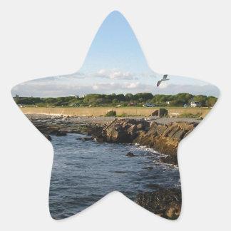 ニューポートビーチ 星シール