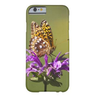 ニューメキシコ、米国 BARELY THERE iPhone 6 ケース