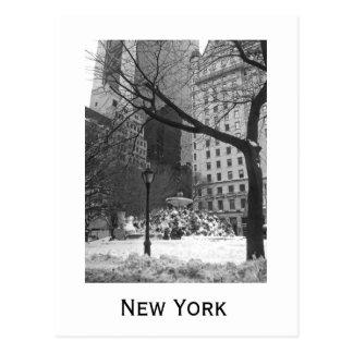 ニューヨークのSnowy公園 ポストカード