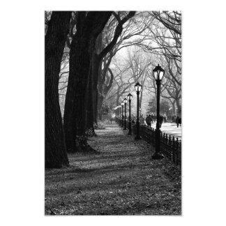 ニューヨークシティのセントラル・パーク フォトプリント