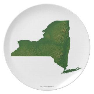 ニューヨーク州の地図 プレート