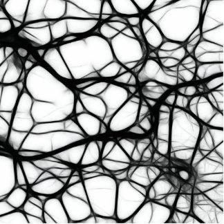 ニューロン 写真彫刻(台付き)