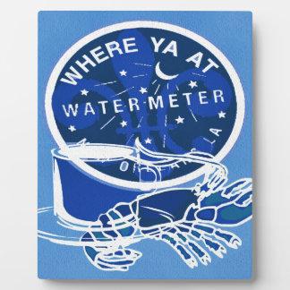 ニュー・オーリンズの記号のフレンチクォーターのメートルカバー フォトプラーク