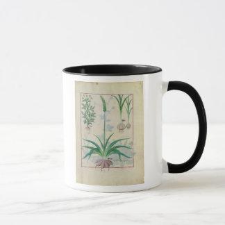 ニンニクおよび他の植物 マグカップ