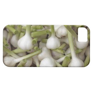 ニンニクの球根 iPhone SE/5/5s ケース