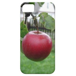 ニースの水分が多いApple iPhone SE/5/5s ケース