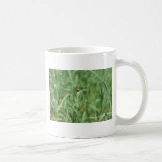 ネコヤナギのトンボ コーヒーマグカップ