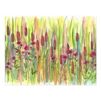 ネコヤナギの野生の花草原の水彩画のスケッチ ポストカード