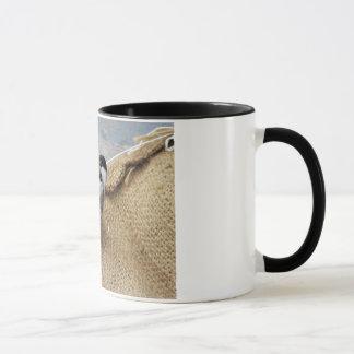 ネスティング《鳥》アメリカゴガラ マグカップ