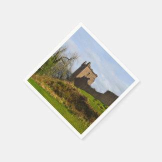 ネス湖、スコットランドに沿うUrquhartの城の台なし スタンダードカクテルナプキン