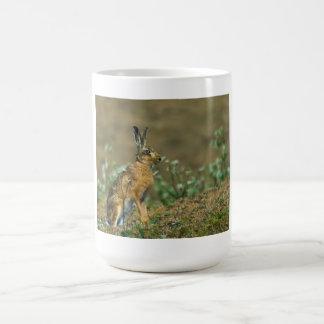 ノウサギのマグ コーヒーマグカップ