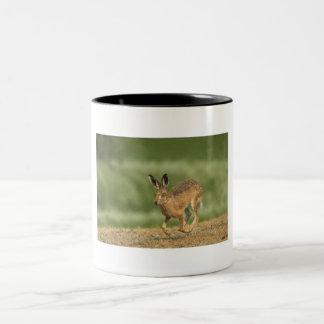 ノウサギのマグ ツートーンマグカップ