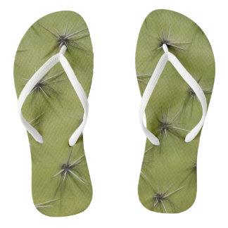 ノベルティの緑のサボテンのpricksのイメージのビーチのビーチサンダル ビーチサンダル