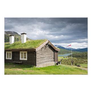 ノルウェーの写真のプリントの芝地の屋根の丸太小屋 フォトプリント