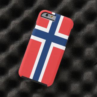 ノルウェーの旗 ケース