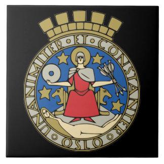 ノルウェーオスロのセラミックタイル タイル