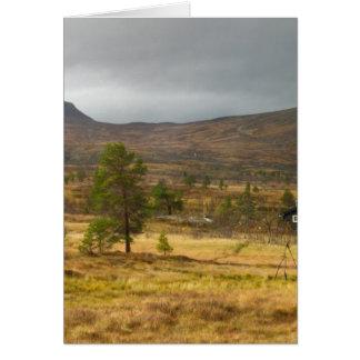 ノルウェー山のプラトーの金秋 カード
