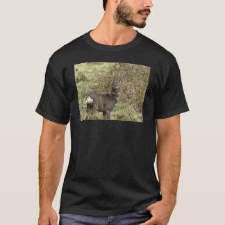ノロジカの木びき台の大人のTシャツの黒 Tシャツ