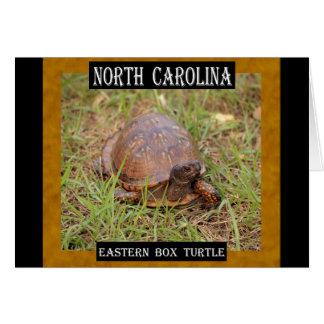 ノースカロライナの東のアメリカハコガメ(NC、TN) カード