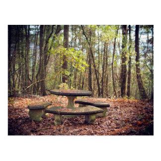 ノースカロライナの森林のピクニック区域 ポストカード