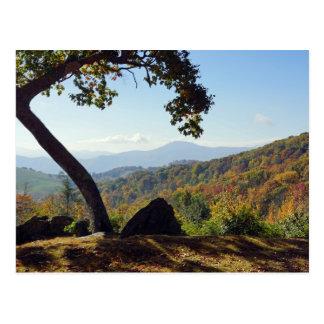 ノースカロライナ山 はがき