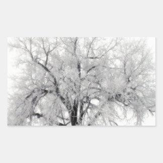ノースダコタの草原のFrostryの単独木 長方形シール