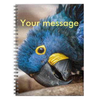 ノートのかわいく青いHyacinthのコンゴウインコのオウム ノートブック