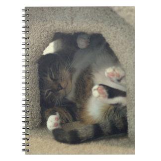 ノート-昼寝は猫をあなたは好みます! ノートブック