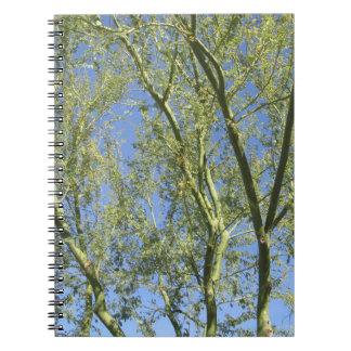 ノート--Palo Verdeの木 ノートブック