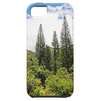 ノーフォーク島マツHawai'i iPhone SE/5/5s ケース