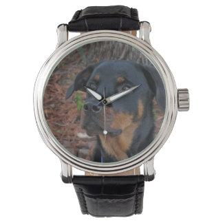 ハイディのロットワイラーの腕時計 腕時計