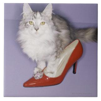 ハイヒールに歩んでいる猫 タイル