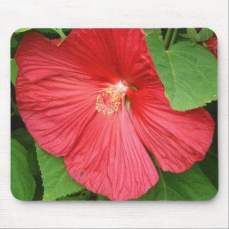 ハイビスカスの花の明るいマゼンタの花柄 マウスパッド