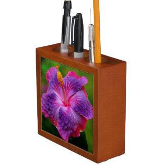 ハイビスカスの花の机のオルガナイザー ペンスタンド