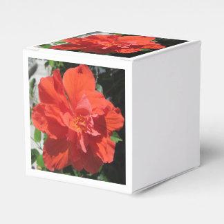 ハイビスカスの赤い顕花植物 フェイバーボックス