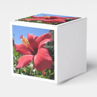 ハイビスカスの赤の花 フェイバーボックス