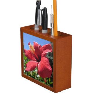 ハイビスカスの赤の花 ペンスタンド