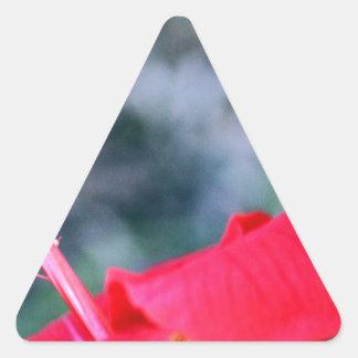 ハイビスカス4 三角形シール・ステッカー