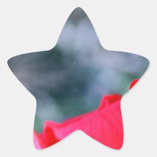 ハイビスカス4 星型シール