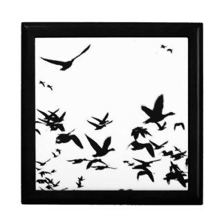 ハクガンの鳥の野性生物動物飛行 ギフトボックス