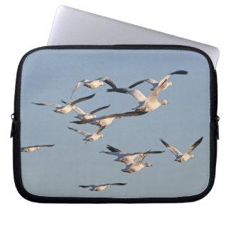 ハクガンの鳥の野性生物動物飛行 ラップトップスリーブ