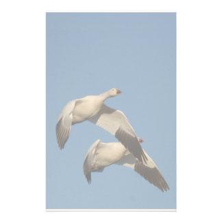 ハクガンの鳥の野性生物動物飛行 便箋