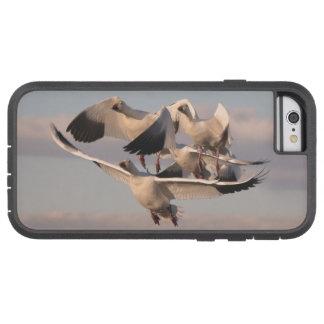 ハクガンのiPhone 6の場合 Tough Xtreme iPhone 6 ケース