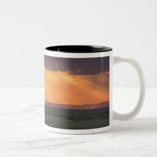 ハゲタカおよびアカシアの木の全景 ツートーンマグカップ