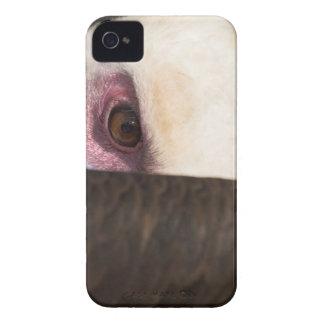 ハゲタカのiphone 4ケースの仲間IDの閉めて下さい Case-Mate iPhone 4 ケース
