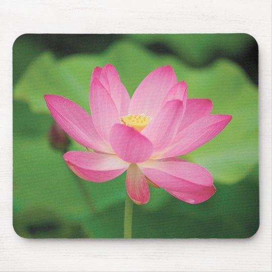ハスの花のマウスパッド,No.03 マウスパッド