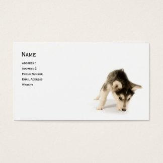 ハスキーな子犬のプロフィールカード 名刺